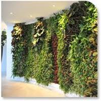 Eco Artificial Green Wall