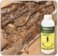 Imidacloprid Organic Pest Control